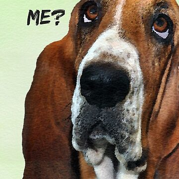 Forgive Me? I'm Sorry. Basset Hound Dog Sticker, Card, Cell Phone Case by TheKitch