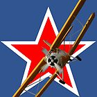 Roundel Design - Antonov An-2 VH-CCE 20110828 by muz2142
