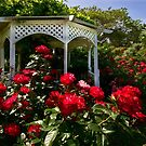 Rosen und Pavillon von Celeste Mookherjee