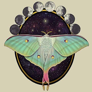 Indian moon moth yellow background by Tarajillian