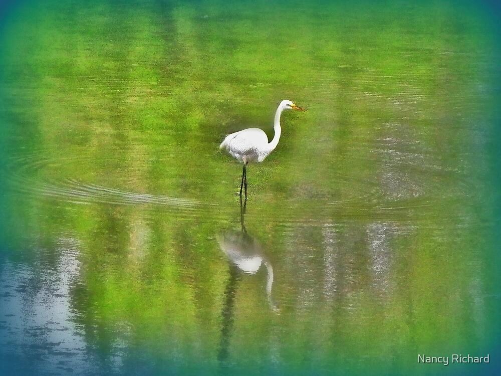 Egret Impressionism ! by Nancy Richard