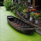 Old boat by Bluesrose