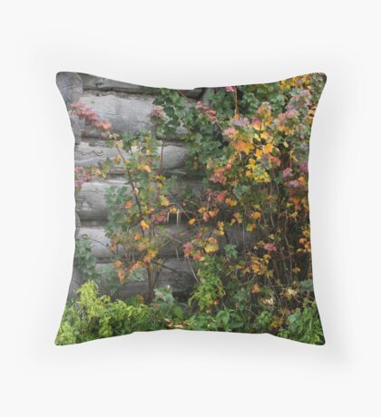 Tumbled Cabin, Fall Color Throw Pillow