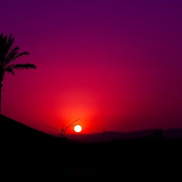 Pink and purple Andalusian sunset with silhouette palm trees and mountain by anytka
