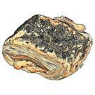 Tebirkes, a Danish Pastry by Gina Lorubbio