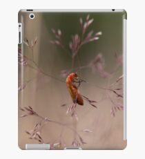 Soldier Beetle on grass stem iPad Case/Skin