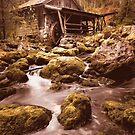 An old watermill  by Andrea Mazzocchetti