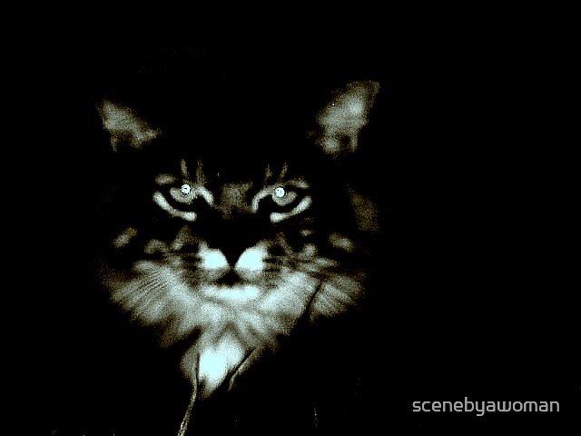 In the dark by scenebyawoman