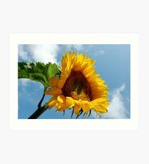 Reach For The Sky... Art Print