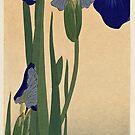 Blue Irises by Ruth Moratz