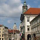 Ljubljana Mestni trg  by Elena Skvortsova