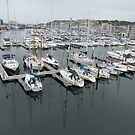 Sutton Harbour Marina by lezvee