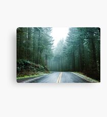 Forest Road Trip - Foggy Day Fir Trees Pacific Northwest Adventure Canvas Print