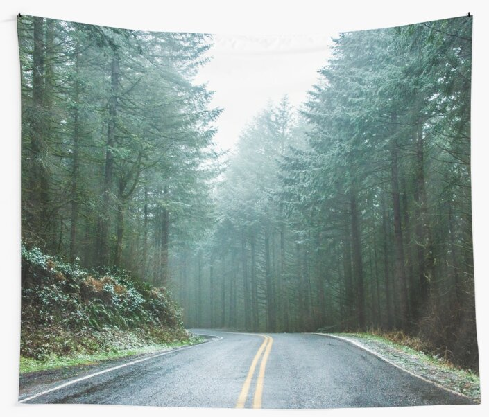 Forest Road Trip - Foggy Day Fir Trees Pacific Northwest Adventure by artcascadia