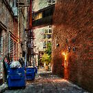 Kansas City Alley 5 by Delany Dean