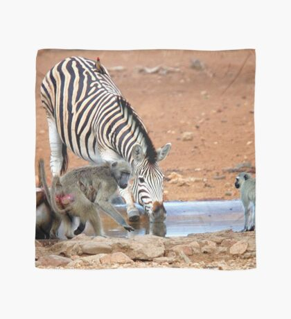 AFRICAN WILDLIFE - SHARE AND SHARE ALIKE ! Scarf
