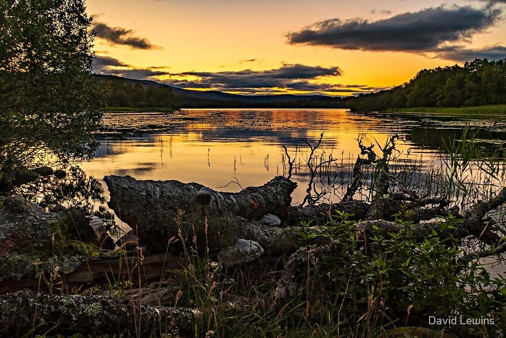 Loch Kinord by David Lewins