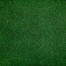 Grass is green by Philipe3d