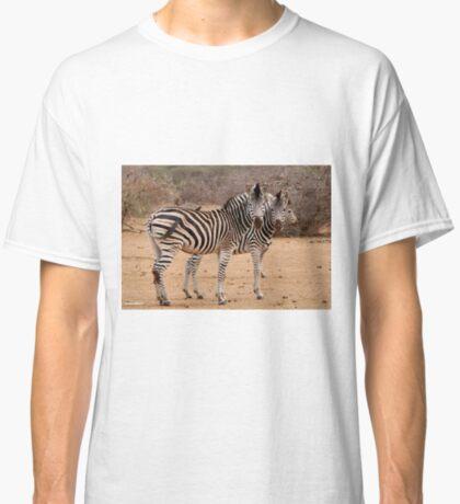 TWO OR THREE ? -  BURCHELL'S ZEBRA – Equus burchelli – Bontkwagga Classic T-Shirt