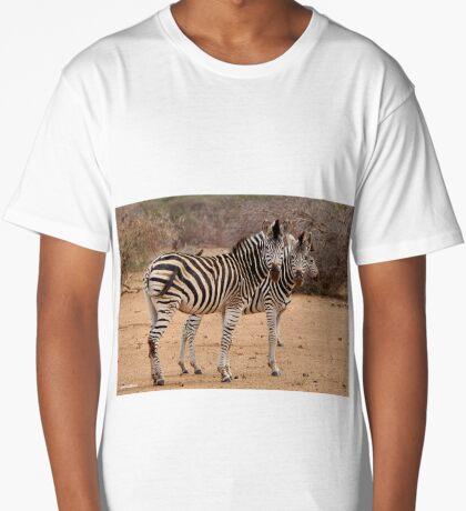 TWO OR THREE ? -  BURCHELL'S ZEBRA – Equus burchelli – Bontkwagga Long T-Shirt