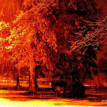 """""""A Snowy Evening in Knoxville"""" (a series, no.5) by ArtbyBob"""