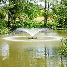 Newent Fountain by LumixFZ28