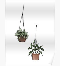 Hanging Plants Poster