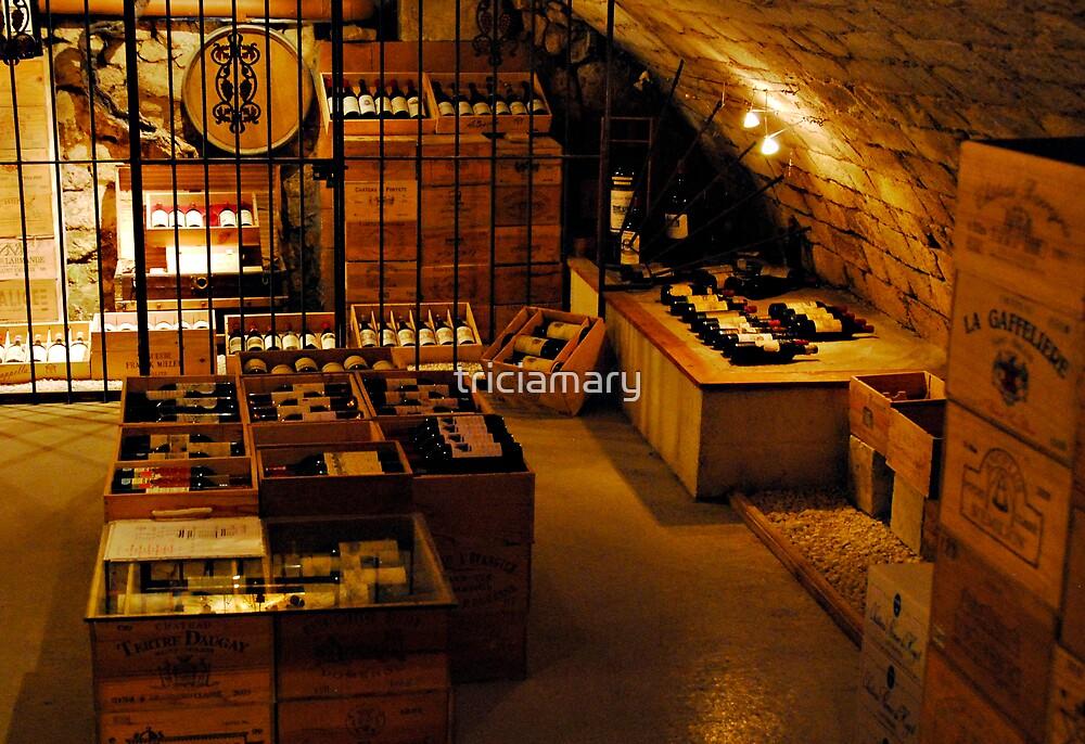 St Emilion Wine Cellar by triciamary