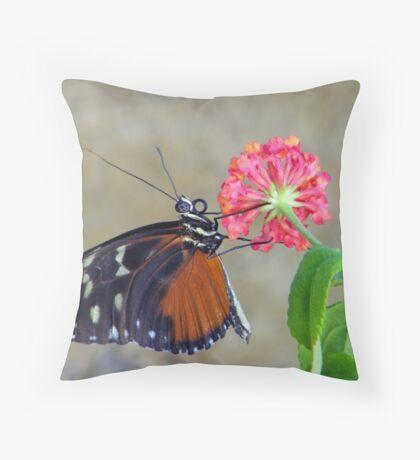 Butterfly On A Lantana Blossom Throw Pillow