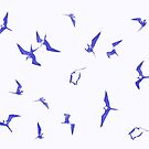 Frigatebirds by #Bizzartino by Bizzartino