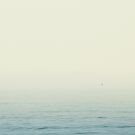 Solitary Bird by Joakim