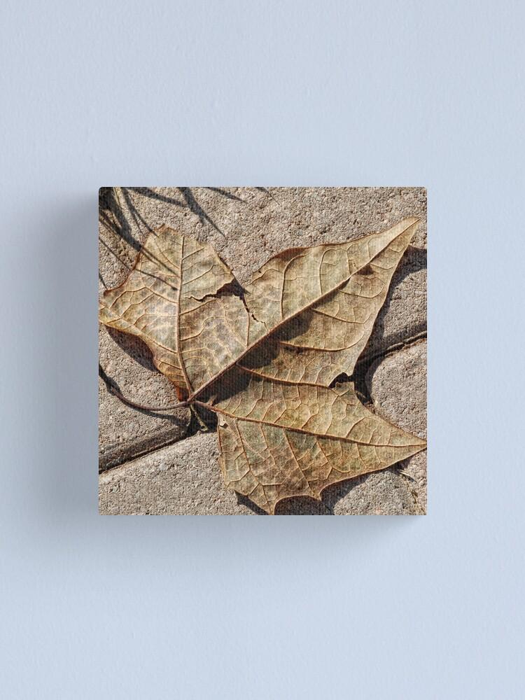 Alternate view of Fallen Leaf Canvas Print