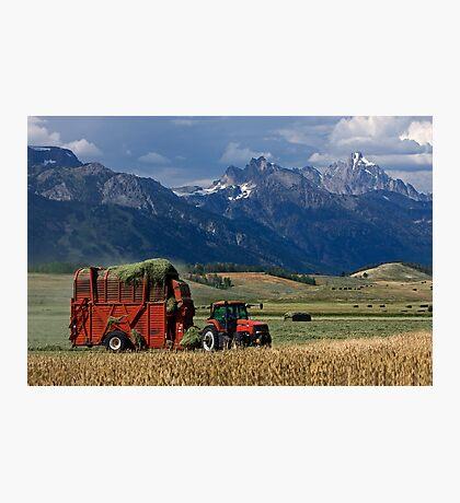 Making Hay, Shadow of the Tetons, Walton Ranch Photographic Print