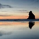 Wharariki Beach. by Michael Treloar