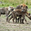 Hyena Mother and Young  by Martina Nicolls