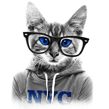 cat with glasses by jackpoint23