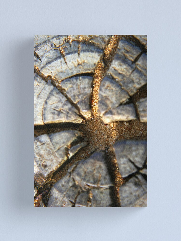 Alternate view of Wood Detail Canvas Print