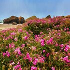 Flowers on the Beach by Kathy Weaver