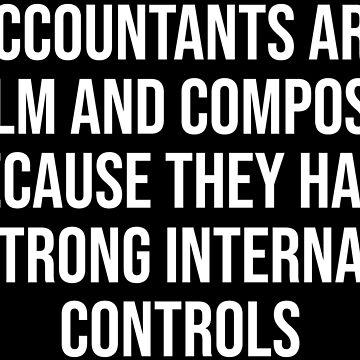 Funny Accountants Internal Controls Pun T-shirt by zcecmza