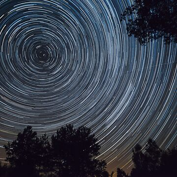 Starry night sky, startrails between trees landscape by LukeSzczepanski