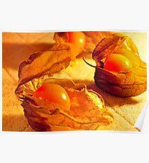 Fruit in a Basket: Physalis Fruit Poster