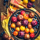 Started the day with a flight of plums. by alan shapiro