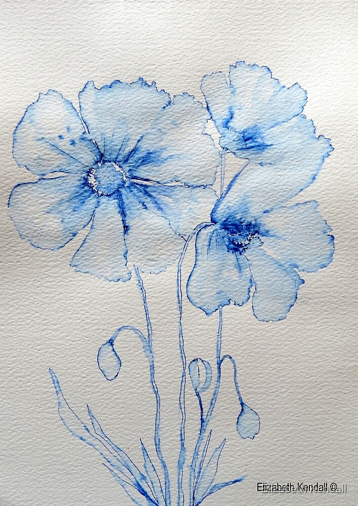 Poppies by Elizabeth Kendall