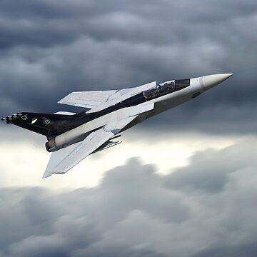 Panavia Tornado F3 ZE887 by aviationart