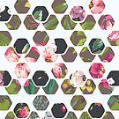 Hexagons In Bloom by THEtoeMas