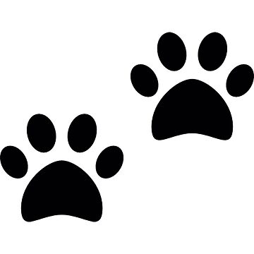 paw dog or  cat by thnatha