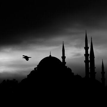 mosque istanbul turkey by mehmetemin