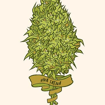 Viva Sativa Bud Drawing by nekhebit