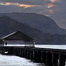 Kauai vista by milton ginos