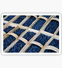 Blueberries in baskets Sticker